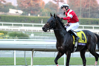 #4 Fort Larned Winner Returning 2  R12 BC Classic G1