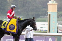 #4 Fort Larned Winner Circle 2 R12 BC Classic G1
