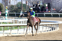 #1 Rail Trip 2nd Place R6 BC Dirt Mile