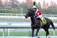 #4 Fort Larned Winner Returning  R12 BC Classic G1