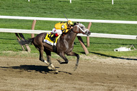 Cross Traffic winning the 2013 Whitney