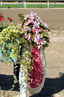 Winners Wreath - 2014 Santa Anita Derby