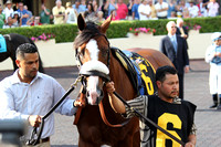 Union Rags in the Walking Ring